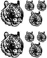 Msct-LionHead.jpg