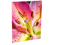 "Unisub Chromaluxe 11""x14"" Matte White Aluminum Photo Panel"